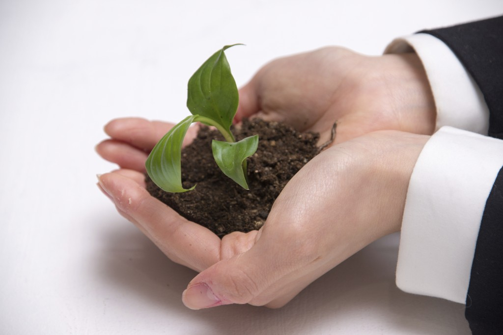 Prepare your Business for the next Stage. Create a Succession Plan Now   Carosella