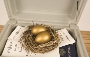 Estate Planning - protect your nest egg